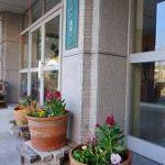 【ボランティア部】正門付近の花の植え替え